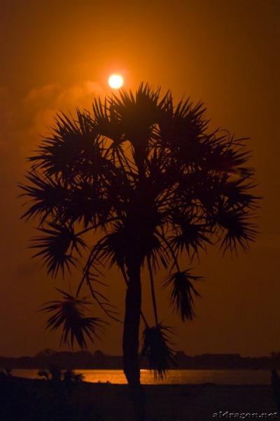 Кольцеобразное затмение 15 января 2010 года, остров Ламу. Первый контакт.