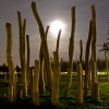 night-rhein-park-02